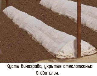 http://www.dom-dobra.su/_up/images/2013/1/11/13/1357896711.jpg