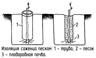 http://www.dom-dobra.su/_up/images/2012/12/13/16/1355401699.jpg