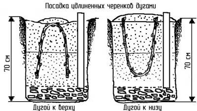 http://www.dom-dobra.su/_up/images/2012/11/30/10/1354256191.jpg
