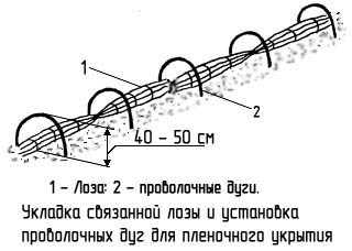http://www.dom-dobra.su/_up/images/2013/1/10/17/1357823749.jpg