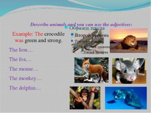 Describe animals and you can use the adjectives: Example: The crocodile was