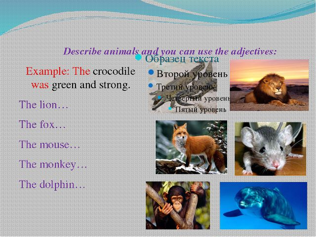 Describe animals and you can use the adjectives: Example: The crocodile was...