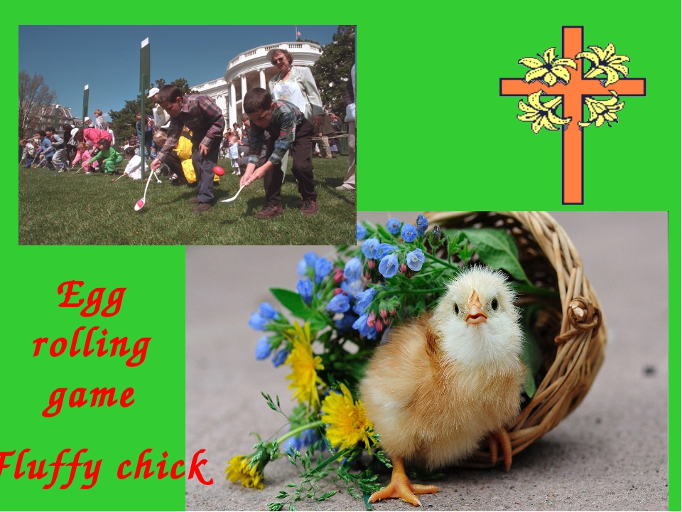 Egg rolling game Fluffy chick