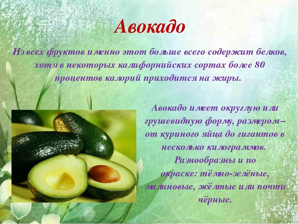 Авокадо Из всех фруктов именно этот больше всего содержит белков, хотя в нек...