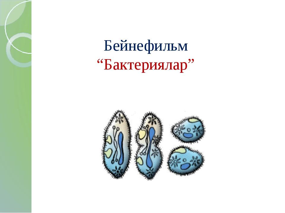 """Бейнефильм """"Бактериялар"""""""