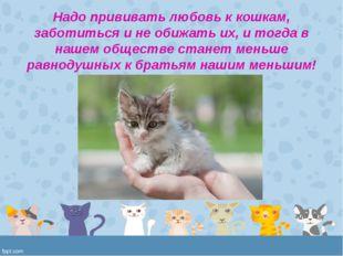 Надо прививать любовь к кошкам, заботиться и не обижать их, и тогда в нашем о