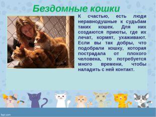 Бездомные кошки К счастью, есть люди неравнодушные к судьбам таких кошек. Дл