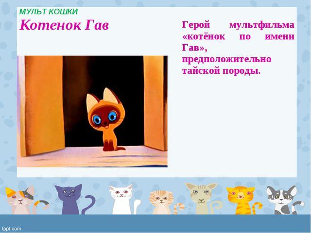 МУЛЬТ КОШКИ Котенок Гав  Герой мультфильма «котёнок по имени Гав», предполож...