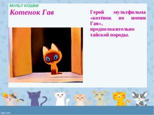 МУЛЬТ КОШКИ Котенок Гав  Герой мультфильма «котёнок по имени Гав», предполож