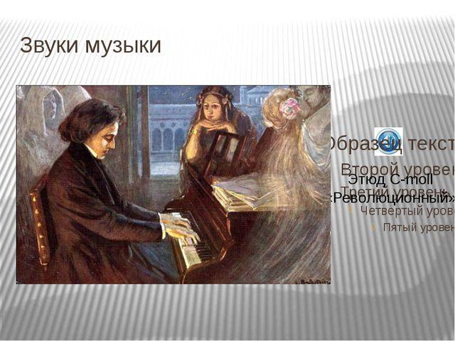 Звуки музыки Этюд С-moll «Революционный»