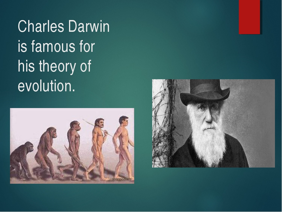 a biography of charles darwin the creator of evolution theory Charles darwin was a product of his times and no doubt viewed non-europeans as inferior in ways, but he was far more liberal than most: he vehemently opposed slavery (darwin 1913, especially chap 21), and he contributed to missionary work to better the condition of the native tierra del fuegians.
