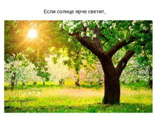 Если солнце ярче светит,