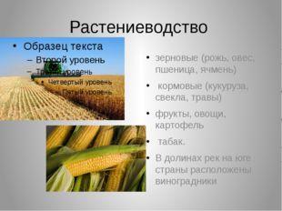 Растениеводство зерновые (рожь, овес, пшеница, ячмень) кормовые (кукуруза, св