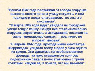 """""""Весной 1942 года полуживая от голода старушка вынесла своего кота на улицу"""