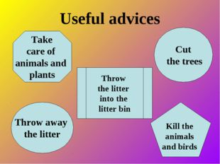Useful advices Take care of animals and plants Kill the animals and birds Cut