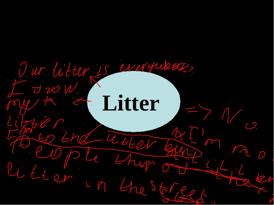 What do you know about litter in our town? Litter