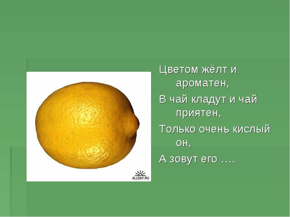 Цветом жёлт и ароматен, В чай кладут и чай приятен, Только очень кислый он, А...