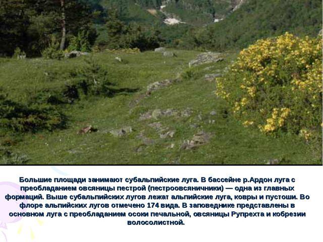 Большие площади занимают субальпийские луга. В бассейне р.Ардон луга с преобл...