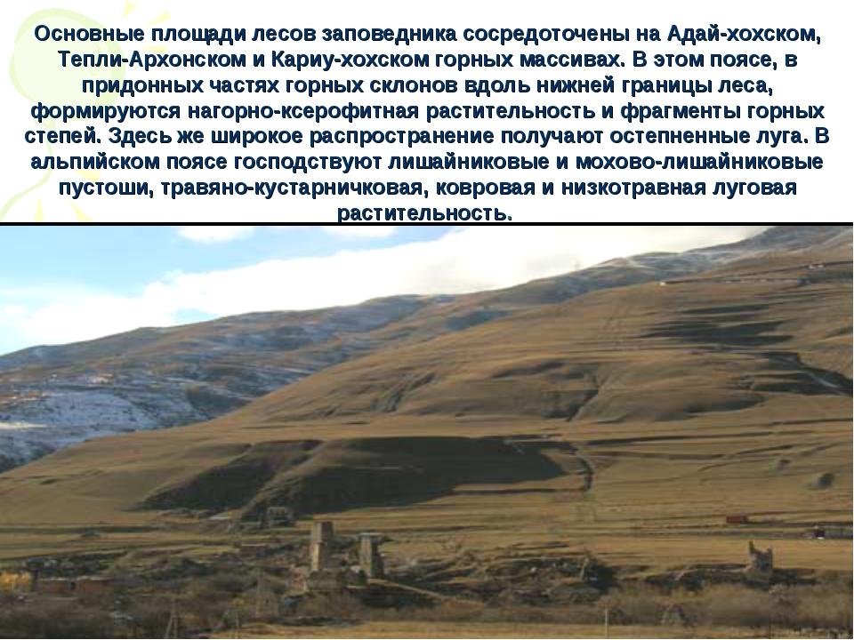 Основные площади лесов заповедника сосредоточены на Адай-хохском, Тепли-Архон...