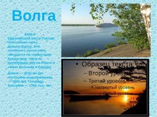 Волга Во́лга — река в Европейской части России. Небольшая часть дельты Волги,