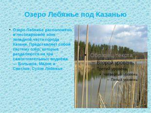 Озеро Лебяжье под Казанью Озеро Лебяжье расположено в лесопарковой зоне запад