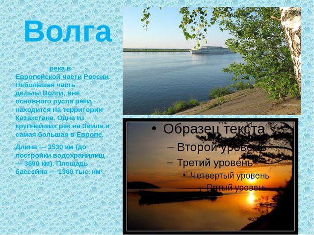 Волга Во́лга — река в Европейской части России. Небольшая часть дельты Волги,...