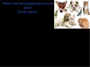 What is the most popular pet in your class? Do the survey. What have you got?