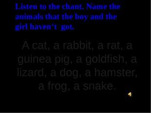 A cat, a rabbit, a rat, a guinea pig, a goldfish, a lizard, a dog, a hamster,