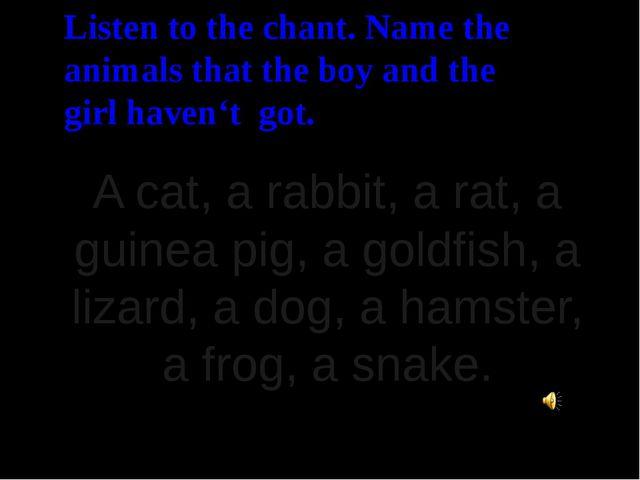 A cat, a rabbit, a rat, a guinea pig, a goldfish, a lizard, a dog, a hamster,...