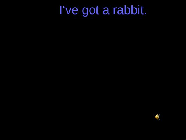 I've got a rabbit. I've got a rabbit. I've got a rat. I've got a guinea pig....