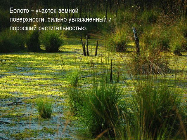 Болото – участок земной поверхности, сильно увлажненный и поросший растительн...