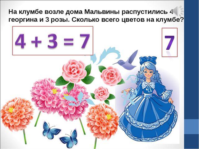 На клумбе возле дома Мальвины распустились 4 георгина и 3 розы. Сколько всего...
