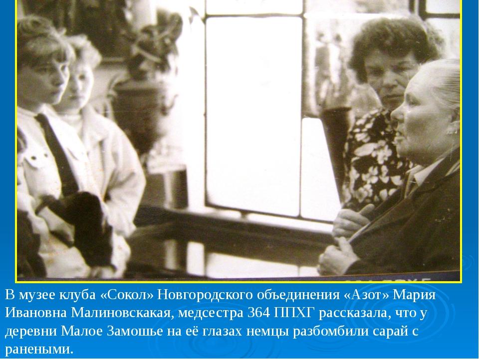 В музее клуба «Сокол» Новгородского объединения «Азот» Мария Ивановна Малино...