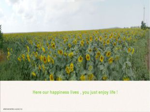 Here our happiness lives , you just enjoy life ! Whether and not from here ne