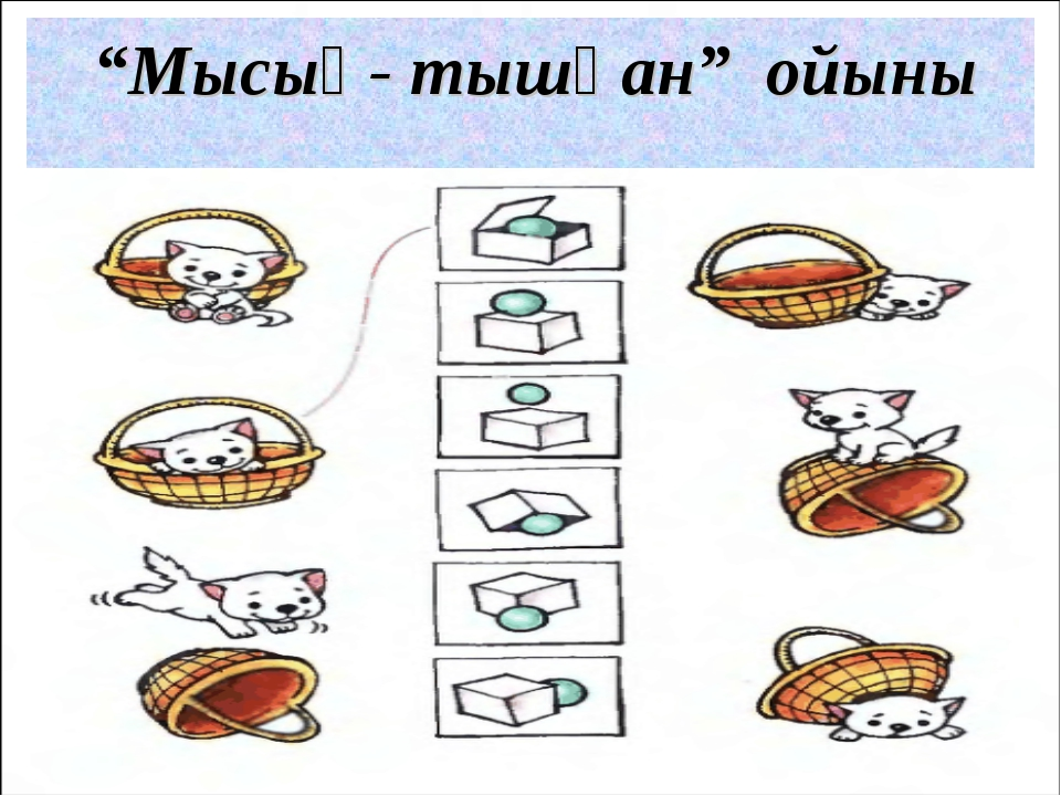 """""""Мысық- тышқан"""" ойыны"""