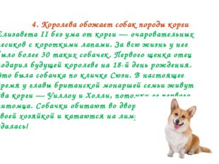 4. Королева обожает собак породы корги Елизавета II без ума от корги — очаров