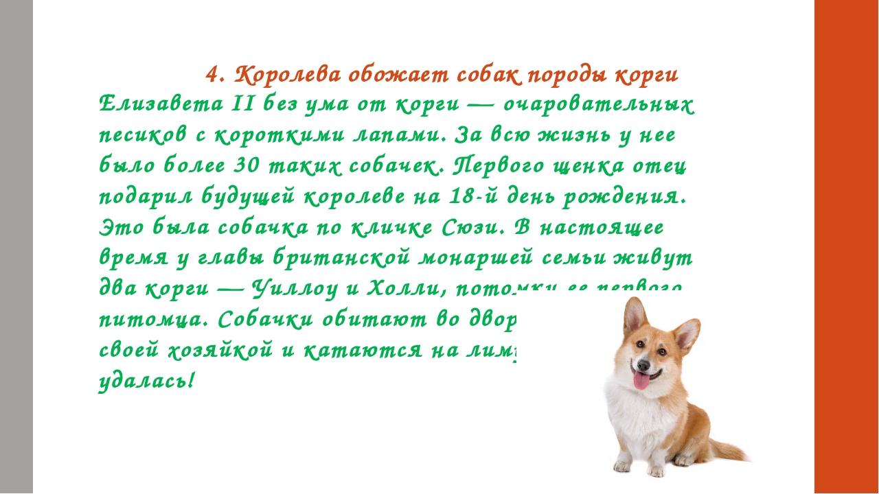 4. Королева обожает собак породы корги Елизавета II без ума от корги — очаров...