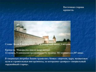 Восточная сторона крепости. Стены более 8 метров высотой и толщиной около З м