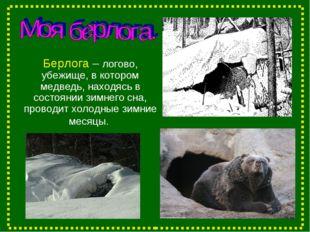 Берлога – логово, убежище, в котором медведь, находясь в состоянии зимнего сн