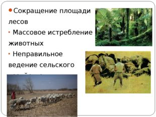 Сокращение площади лесов Массовое истребление животных Неправильное ведение с