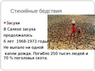 Стихийные бедствия Засухи В Салехе засуха продолжалась 6 лет 1968-1973 годы.