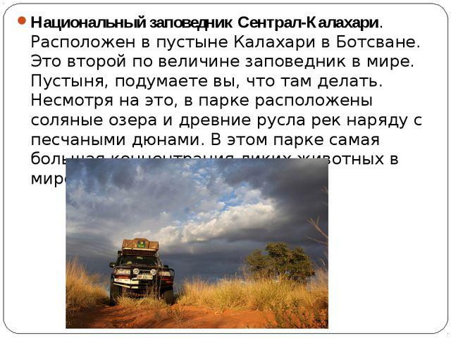 Национальный заповедник Сентрал-Калахари. Расположен в пустыне Калахари в Бот...
