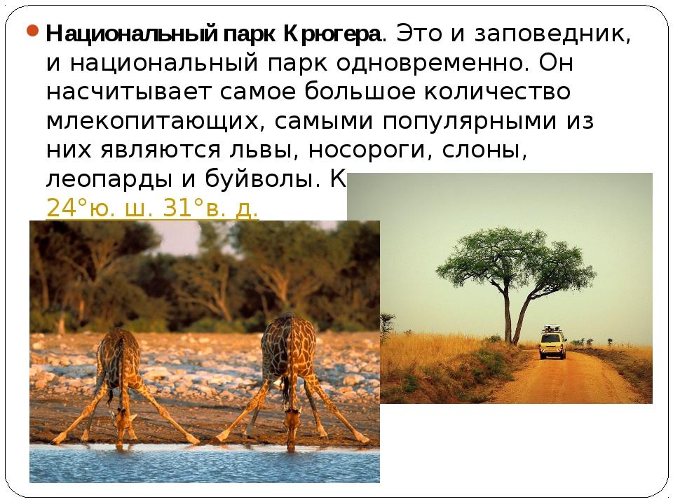 Национальный парк Крюгера. Это и заповедник, и национальный парк одновременно...