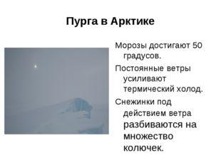 Пурга в Арктике Морозы достигают 50 градусов. Постоянные ветры усиливают терм