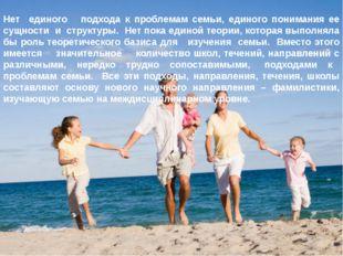 Нет единого подхода к проблемам семьи, единого понимания ее сущности и структ