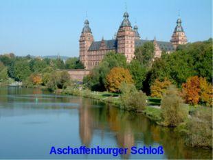 Aschaffenburger Schloß