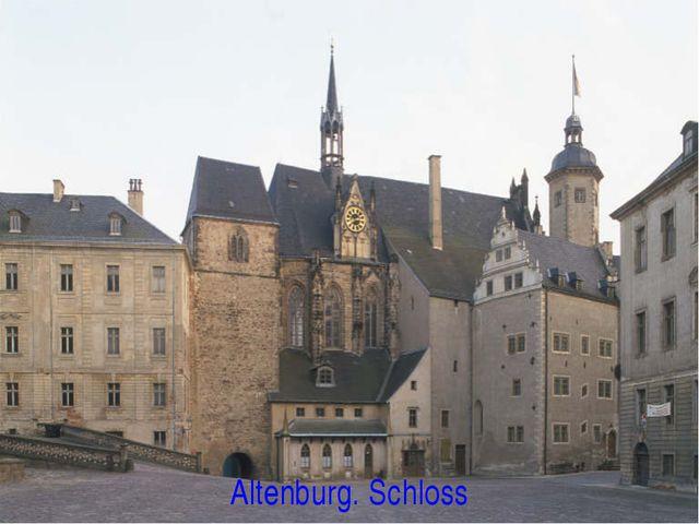 Altenburg. Schloss