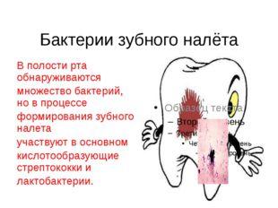 Бактерии зубного налёта В полости рта обнаруживаются множество бактерий, но в