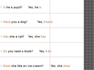 Is he a pupil? Yes, he is Have you a dog? Yes, I have Has she a cat?