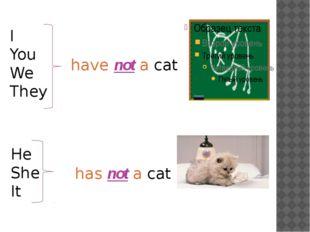 I You We They have not a cat He She It has not a cat
